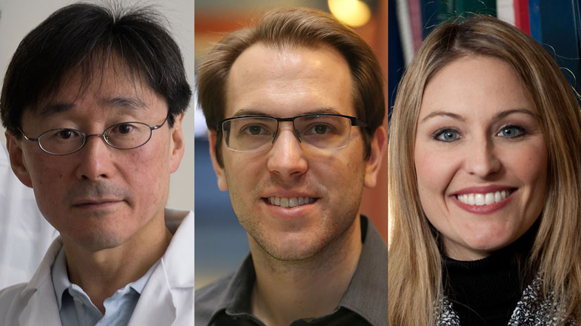 Three Rice Engineering faculty named to endowed chairs